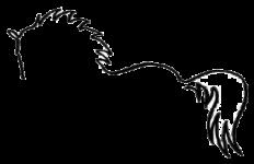 Banner-logo_edited-1